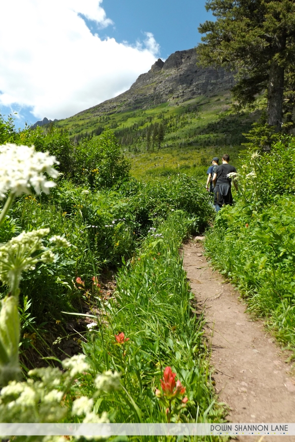 Exploring Two Medicine in Glacier National Park. See Running Eagle Falls, Astor Falls, Rockwell Falls, and much more!